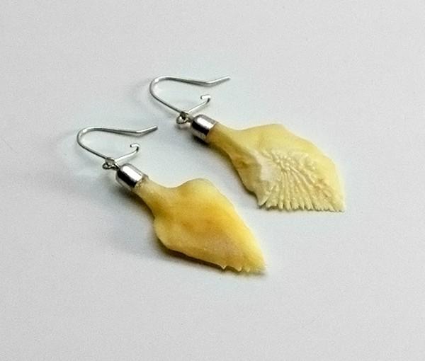 Schmuck - Schmelzschuppen Ohrringe